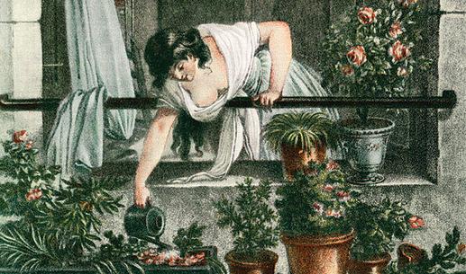 Polievanie rastlín